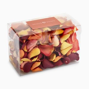 Autumn mix biodegradable wedding confetti