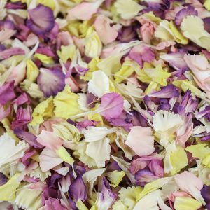 Carnation Petal Confetti Mix by Petals & Roses
