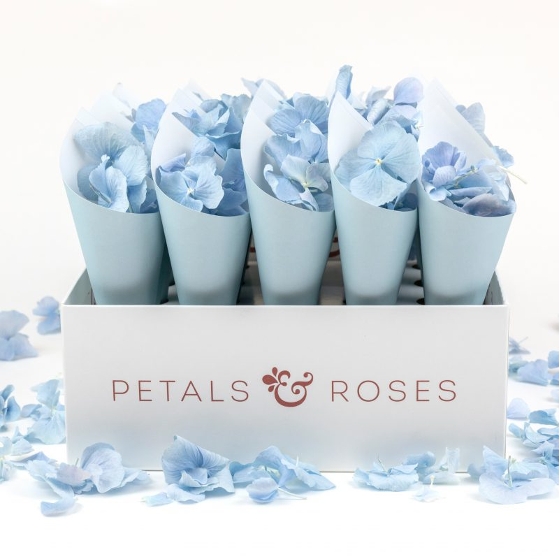 Petals and Roses launch new confetti cone box!