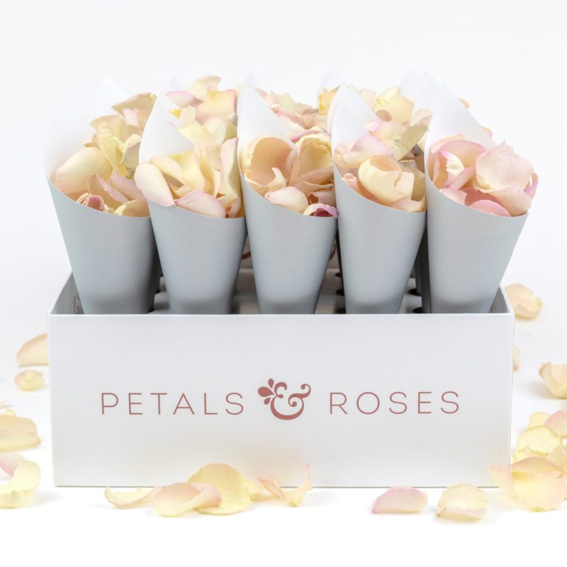 Confetti Cone Box with Grey Confetti Cones and Palest Pink Rose Petals