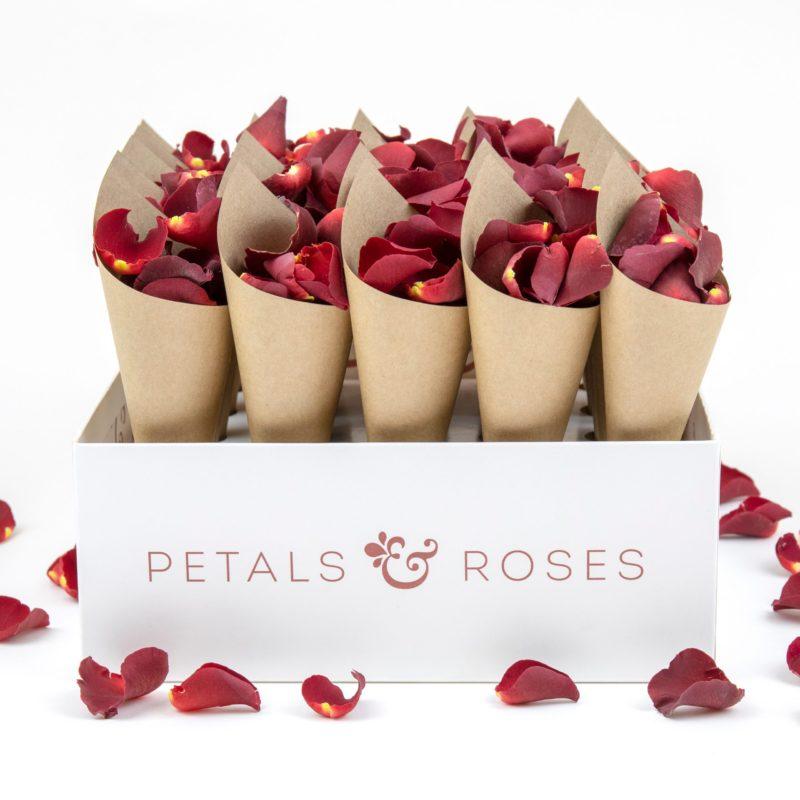 Confetti Cone Box with Kraft Confetti Cones and Romanic Red Petals