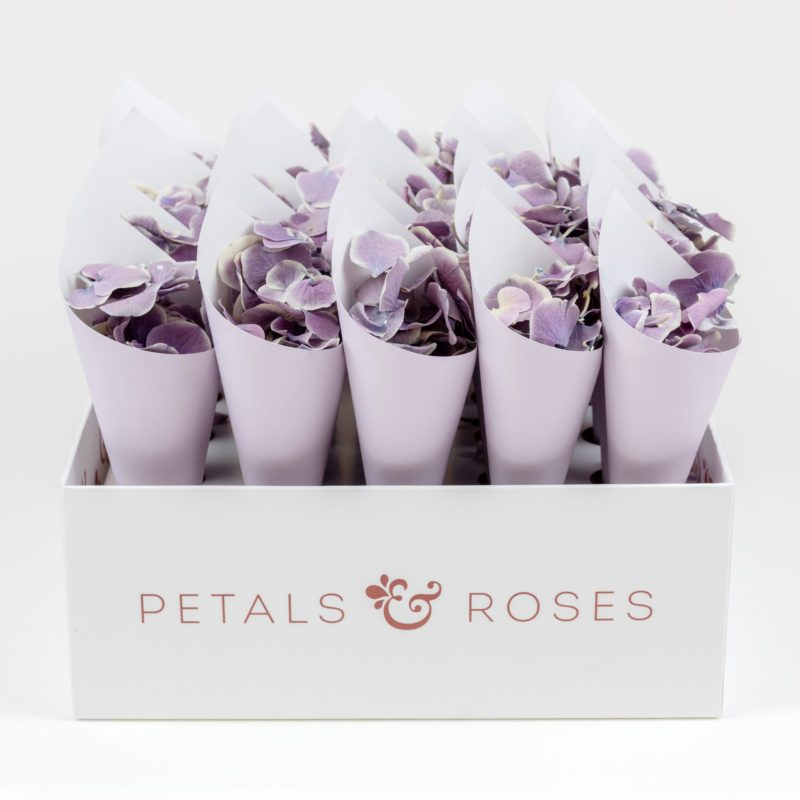 Confetti Cone Box with Lilac Confetti Cones and Violet White Hydrangea Petals