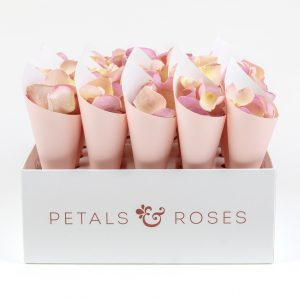 Petal Confetti Cone Box with Pink Cones and Candy Floss Rose Petals