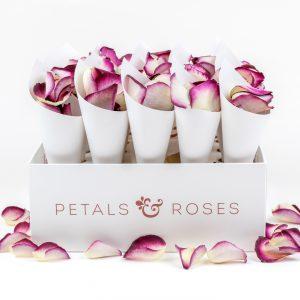 Confetti Cone Box with White Cones and Damson Velvet Rose Petals