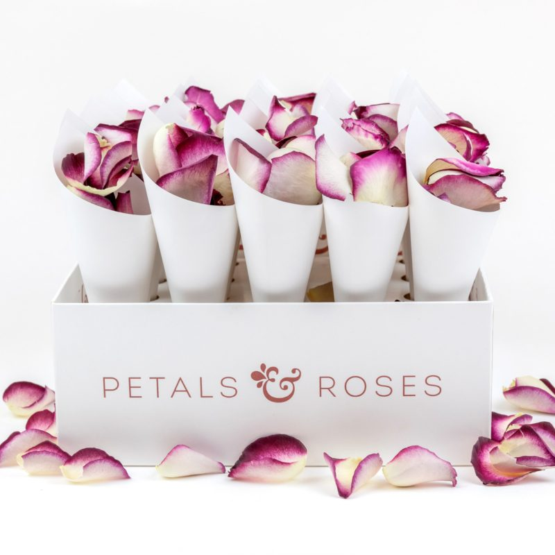 Confetti Cone Box with White Cones and Damson Velvet Rose Petals