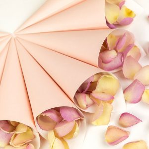 Cone Package with Pink cones and Candy Floss Petals