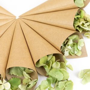 Cone Package with Kraft cones and Sage Green Hydrangea Petals