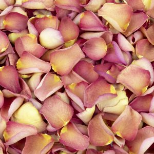 Flame Red freeze dried rose petals
