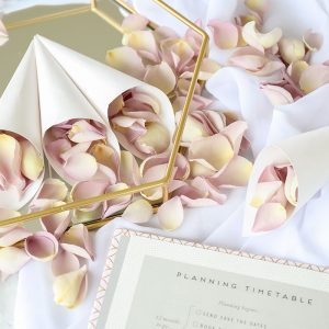Freeze Dried Mother of Pearl Rose Petals with White Confetti Cones