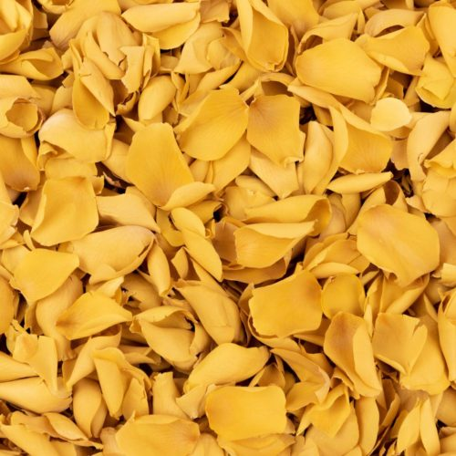 Yellow Freeze Dried Rose Petals