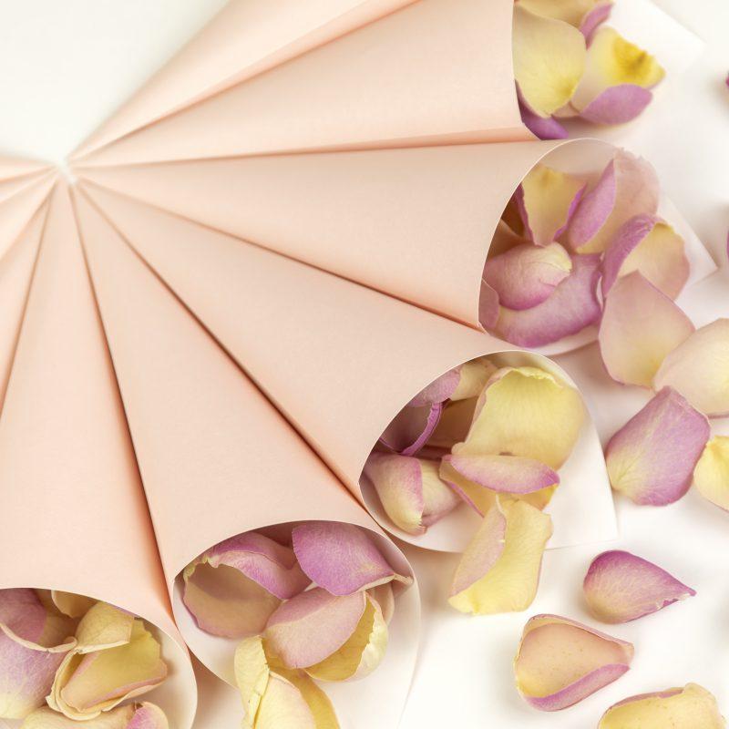 Petal Confetti Cone Package