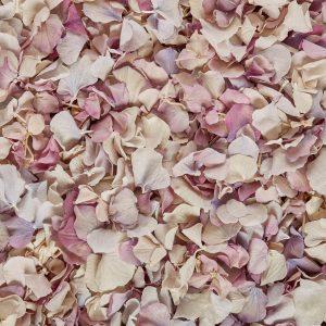 Vintage petals mix
