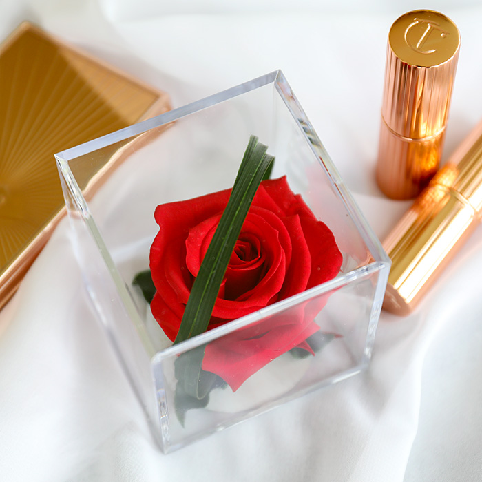Red Timeless Rose Cube