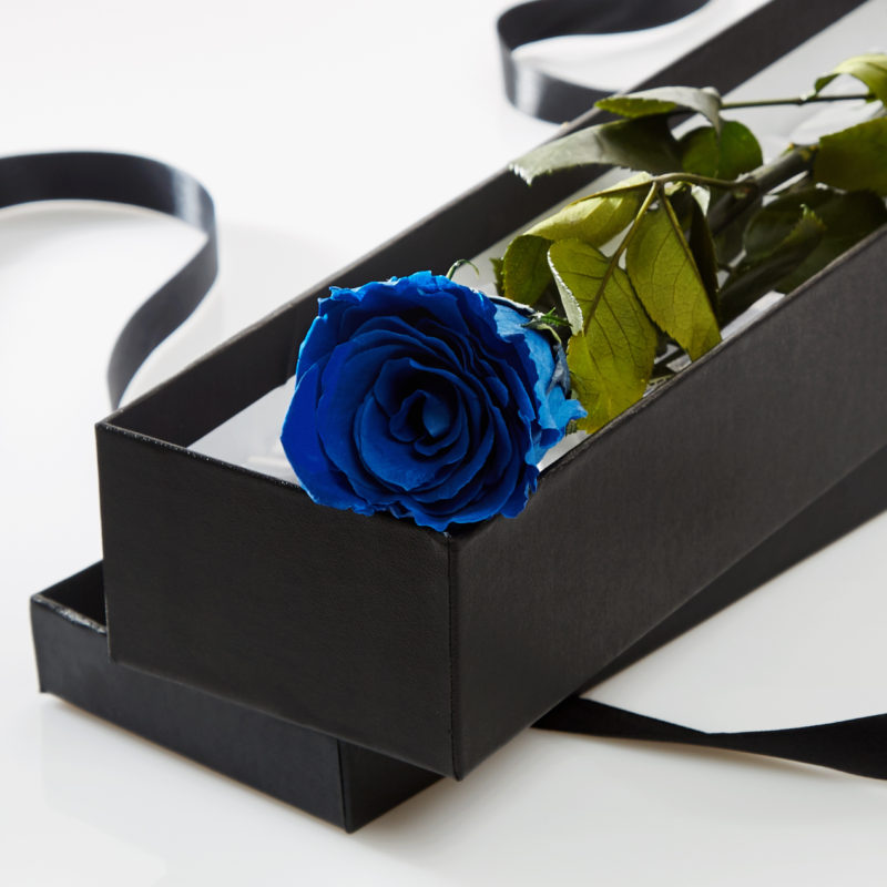 Blue Timeless Rose Stem in Gift Box