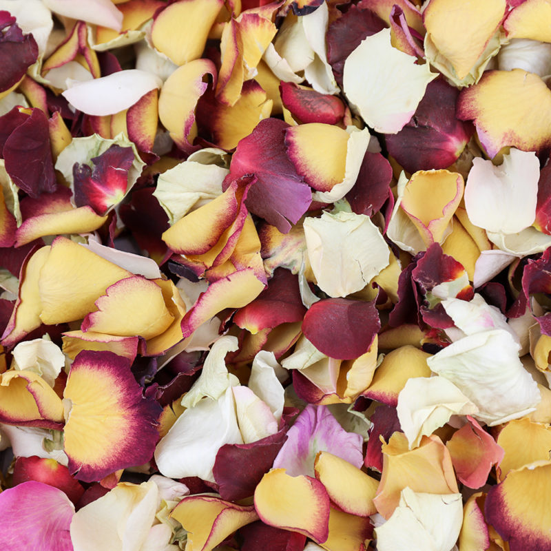 Mixed Colour Petals (10 Litre)