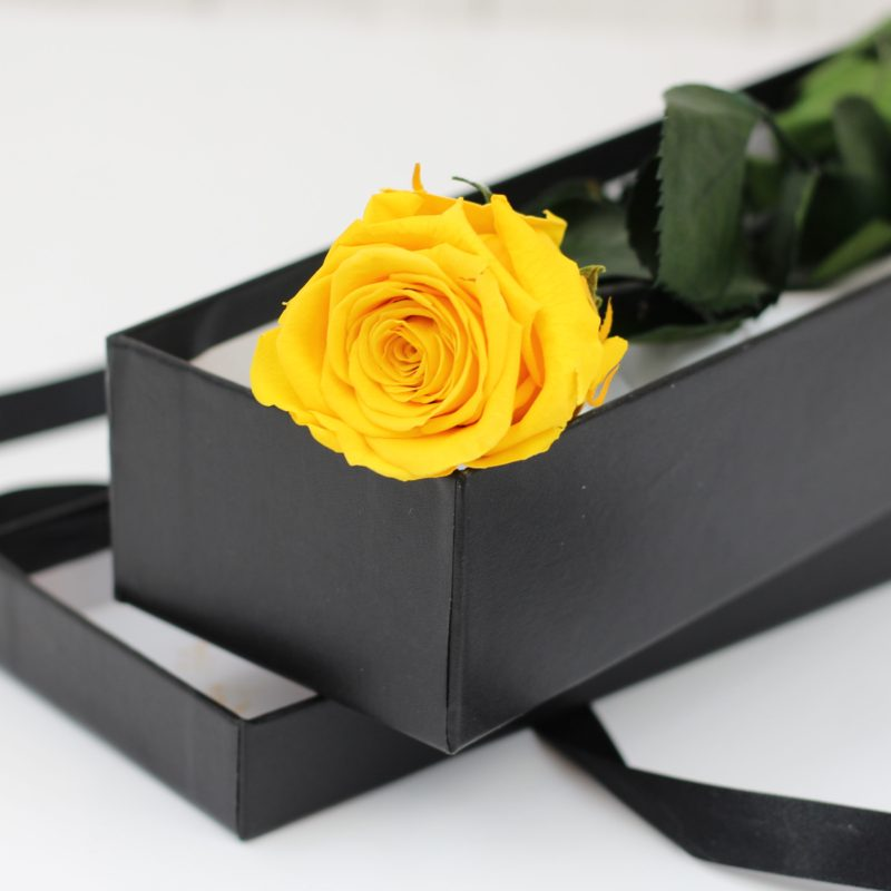 Yellow Timeless Rose Stem in Gift Box