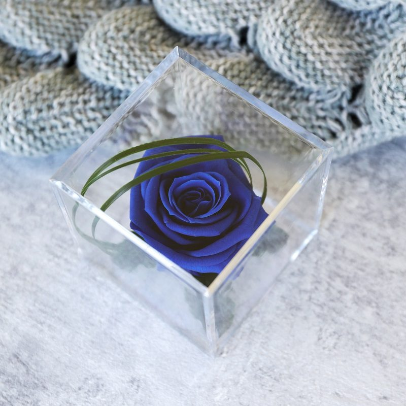 Blue Timeless Rose Cube