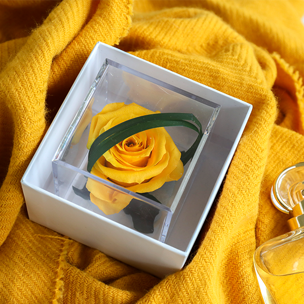 Did you know that Preserved Roses are more eco-friendly than fresh Roses?