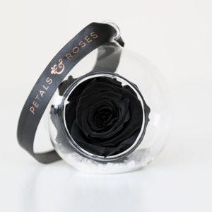 Stunning Black Preserved Rose in open glass sphere