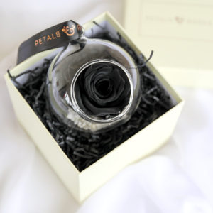 Black Preserved Hanging Rose in Gift Box