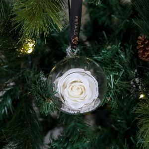 Timeless everlasting white rose bauble with black and rose gold ribbon hung on a Christmas Tree