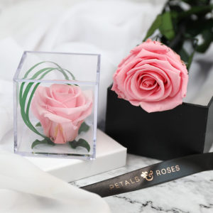 Pink Rose Cube and Pink Rose Stem from Petals & Roses