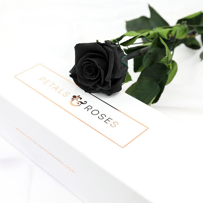 Luxury Black Preserved Single Rose Stem in gift box