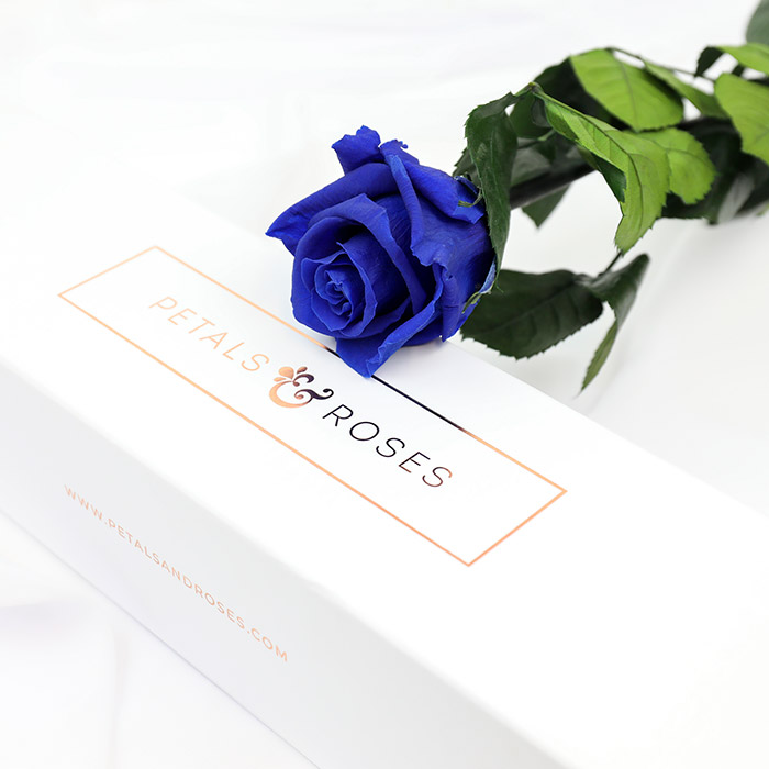 Blue Preserved Single Rose Stem