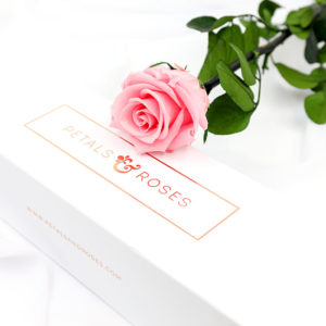 Real Pink Preserved Rose Stem in a luxury gift box gift
