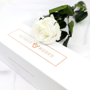 Preserved White Single Rose Stem in luxury gift box