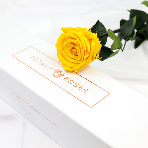 Preserved 1 year single stem yellow rose in a luxury gift box