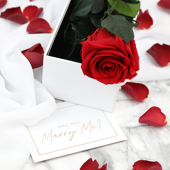 Proposal Rose Stem Gift Set