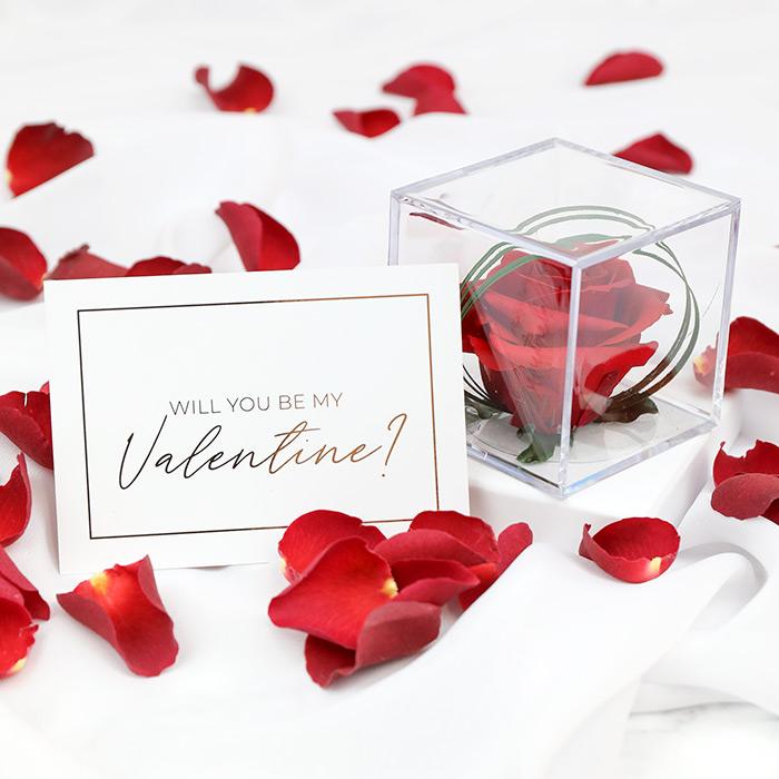 Valentine's Rose Cube Gift Set