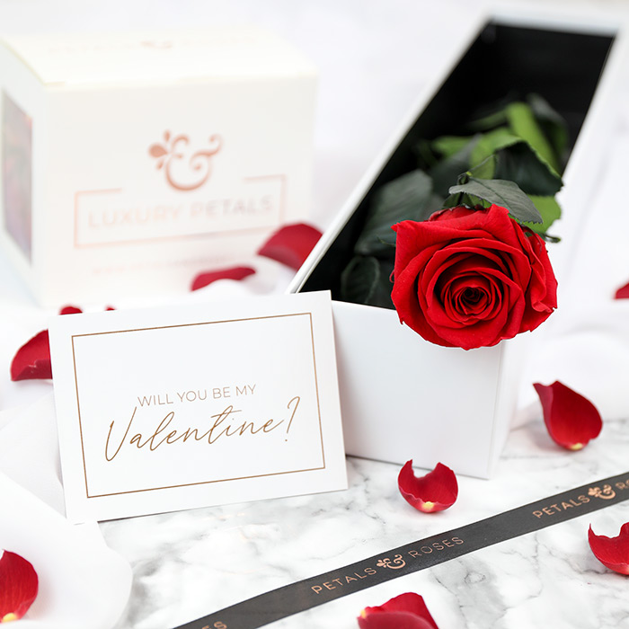 Valentine's Rose Stem Gift Set