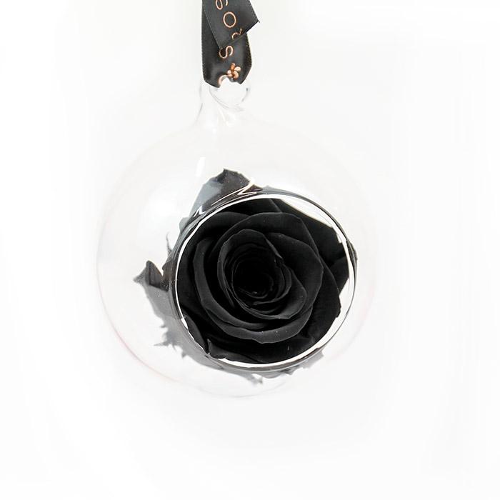 Petals and Roses Black Preserved Hanging Rose