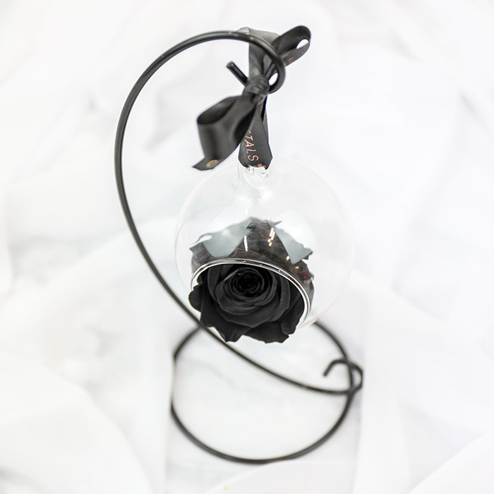 Black Hanging Preserved Rose with Stand