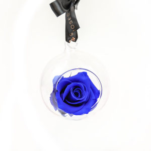 Petals and Roses Blue Preserved Hanging Rose