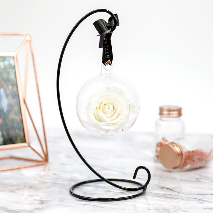 Petals and Roses Preserved Hanging Rose White