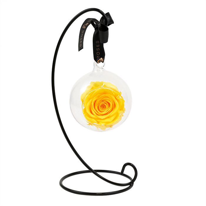Yellow Hanging Preserved Rose with Stand