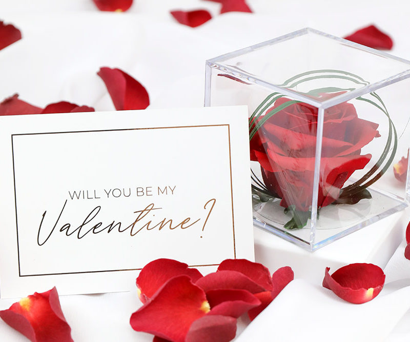 Preserved Rose Gifts for Valentine's Day