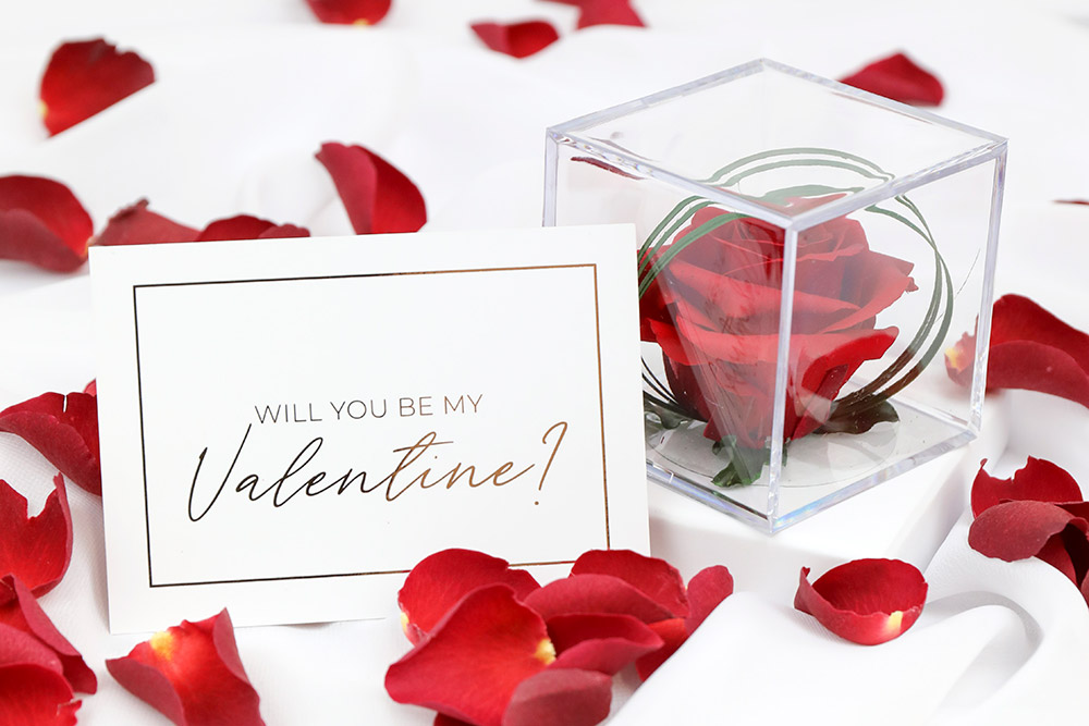 Preserved Red Rose in luxury Gift Cube with 1 litre of Red Rose Petals and Valentine's Day Card