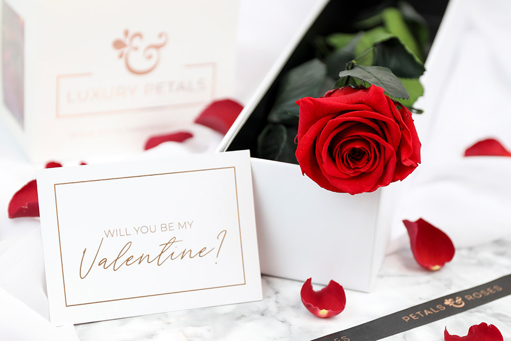 Preserved Red Single Rose Stem in luxury Gift Box with 1 litre of Red Rose Petals and Valentine's Day Card