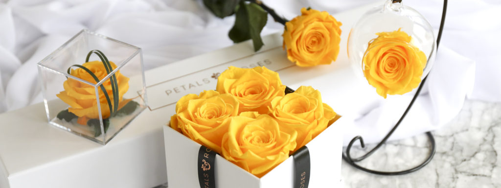 Mother's Day Preserved Rose Gifts