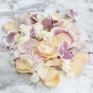 Vintage Mix Rose and Hydrangea Petals