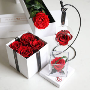 Red Preserved Rose Collection
